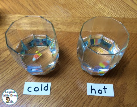 candy corn science experiment - hot or cold water