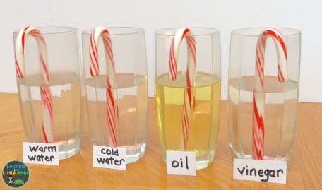 candy cane Christmas science experiment