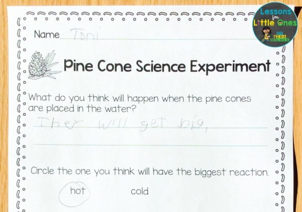 pine cone experiment recording page