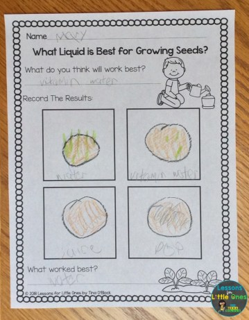 plants science page What liquid is best for growing seeds?