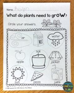 plants printable page