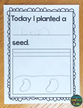 plant journal pages