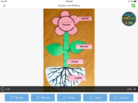 parts of a flower puzzle activity in Seesaw app