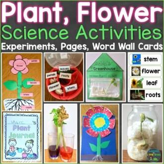 Plants & Flowers Science Activities