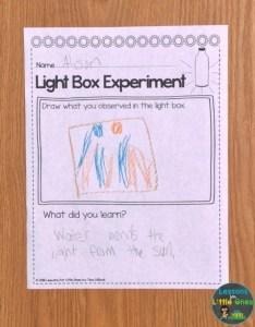 light box experiment recording sheet