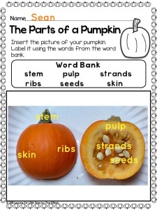 parts of a pumpkin labeling activity using Pic Collage app