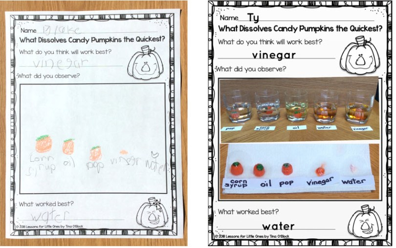 candy pumpkin experiment page