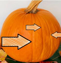 pumpkin ribs