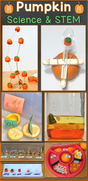 pumpkin science & STEM activities