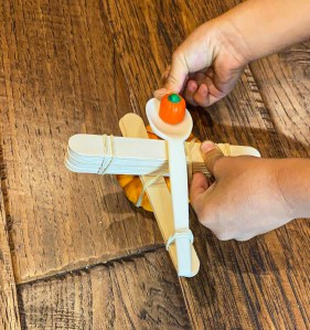 pumpkin catapult STEM activity