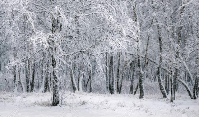 Long hiver russe de  Sofia Goubaïdoulina, compositrice