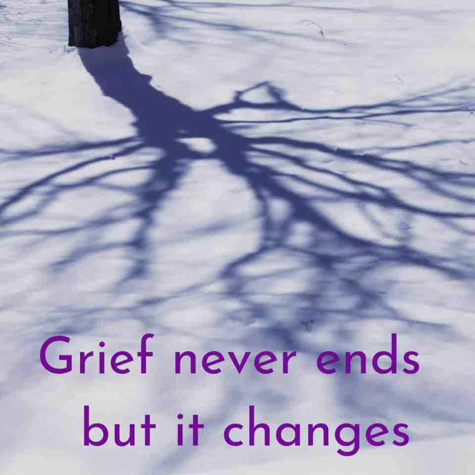 grief never ends but it changes