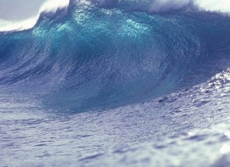 tsunami divorce