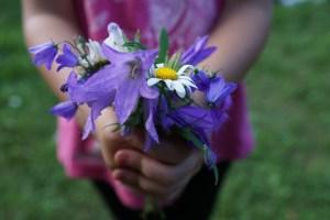 flowers-871514_1920