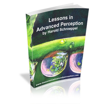 Lessons in Advanced Perception by Harold Schroeppel