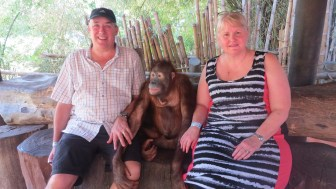 Even closer to the orang-utans..