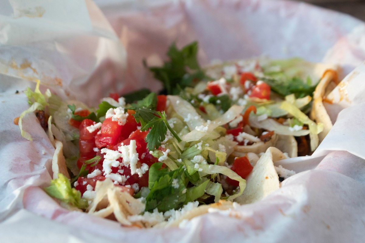 Fuzzy's Taco Shop- vegetarian tacos in Tampa
