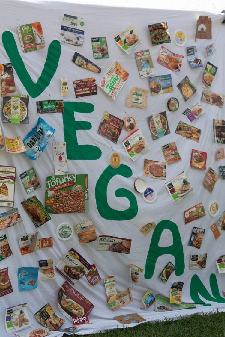 vegan festival tampa florida