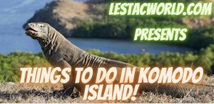 Read more about the article What are the things to do in Komodo Island Indonesia?