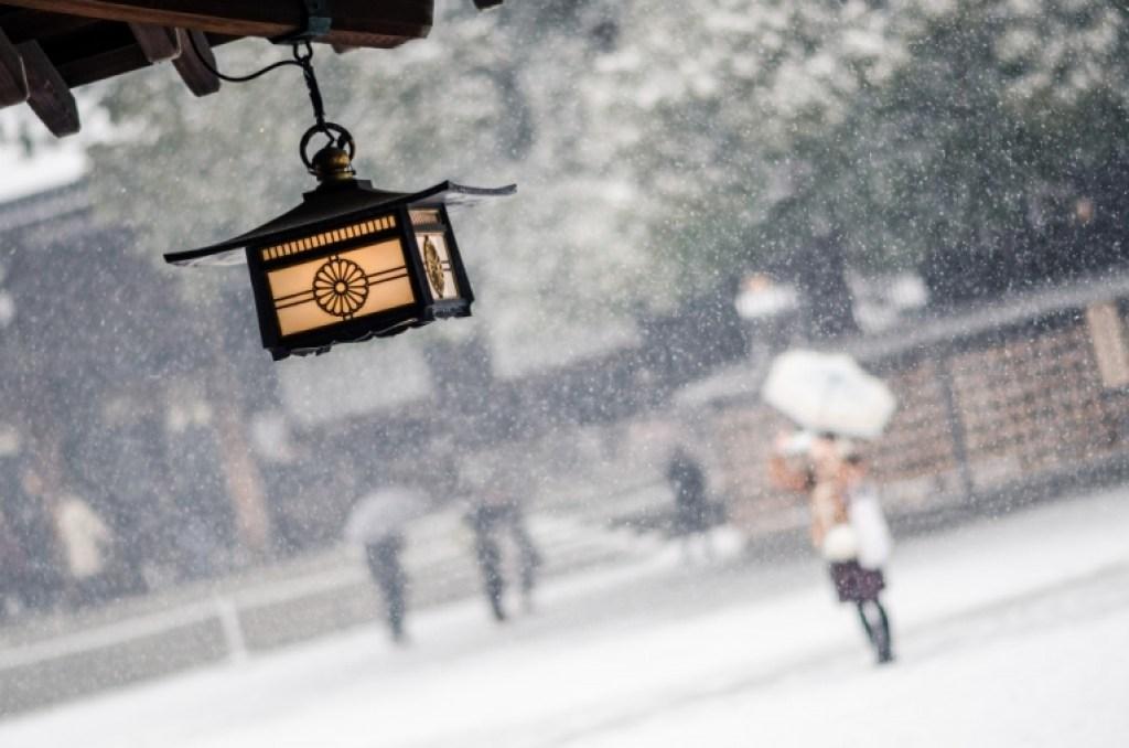 Photo of Japanese lantern at Meiji Jingumae