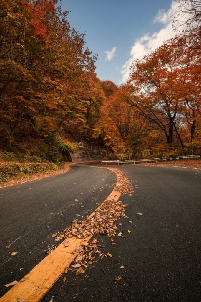 Photo of road in autumn
