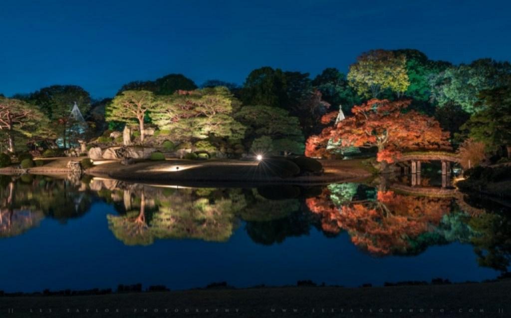 Rikugien Autumn Illumination