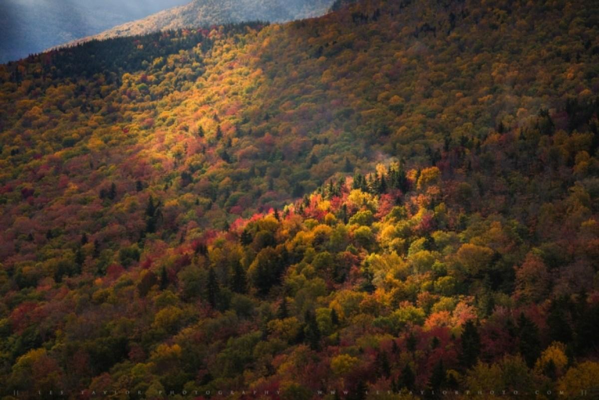 White Mountains Autumn