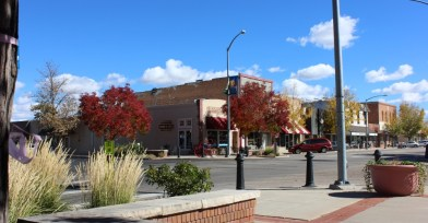 Real Estate Agent Windsor Colorado