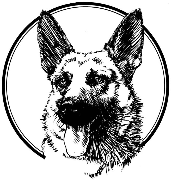 German Shepherd Line Art