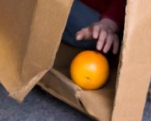 Touching the Orange