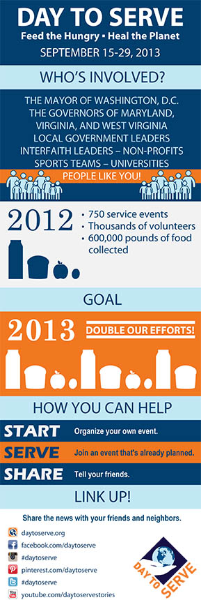 Day to Serve 2013 Infographic
