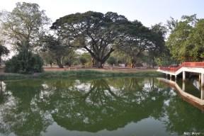 les samans d'Ayutthaya