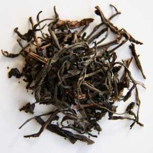 Thé noir organique issu de théiers semi-sauvages