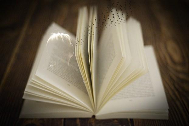 « Livre In room » © Siegfried Marque
