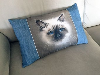 coupon_chat_coussin
