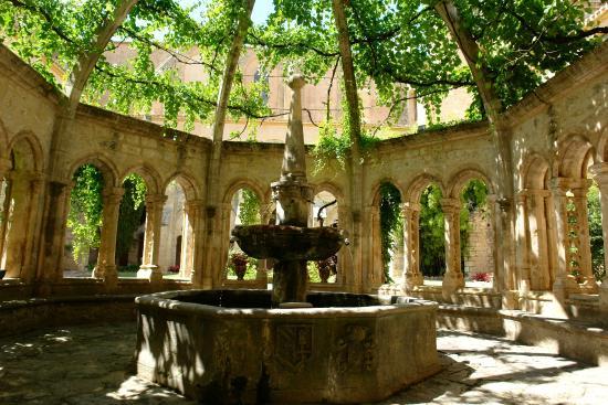 Valmagne : la cathédrale des vignes!