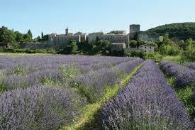 Excursion : On redemarre la saison avec le Gard et ses plus beaux villages!
