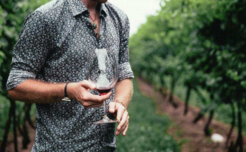 TETE à TETE avec mon vigneron en PIC SAINT LOUP