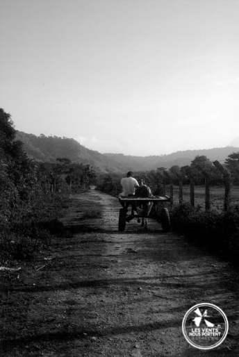 Charette sur un chemin à Capurgana en Colombie