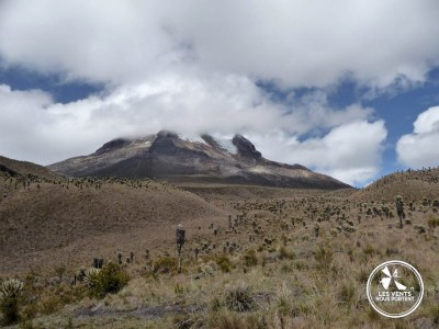 Tolima Los Nevados Colombia