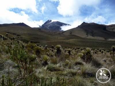 Paramo Parque Los Nevados Colombie-7
