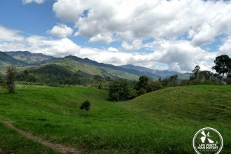 Paysage du Quindio, Photos de Salento Colombie