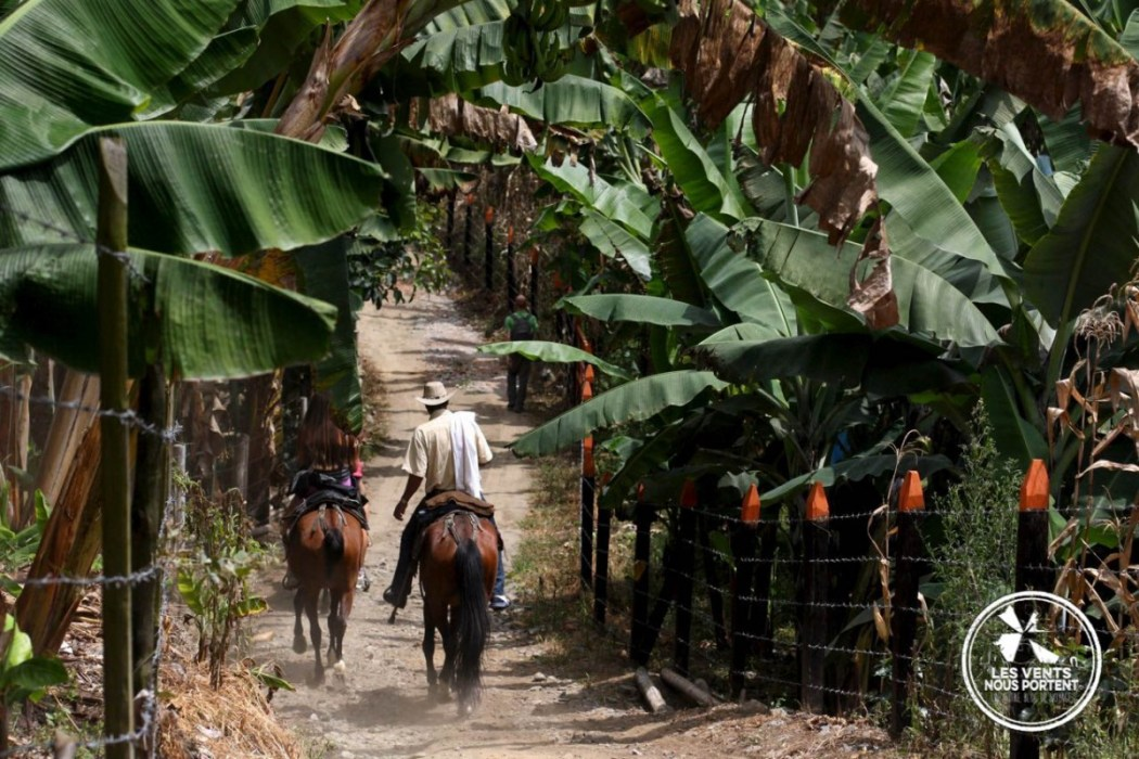 Cavaliers au coeur de la zona cafetera à Salento, Photos de Colombie