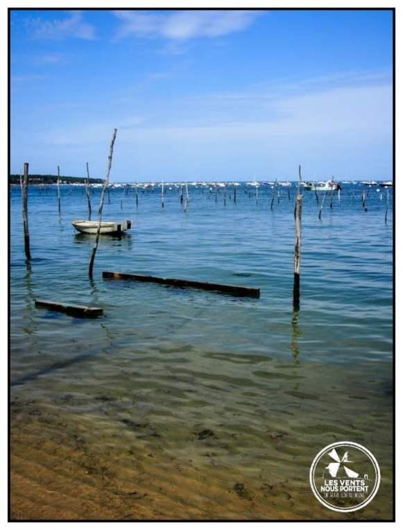 Le Canon Photos Bassin d'Arcachon Tourisme Gironde