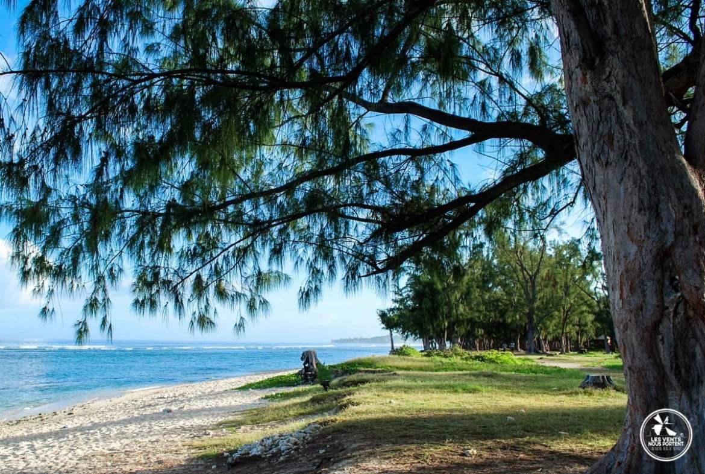 au soleil de la plage de l'ermitage voyage sur ile de la reunion