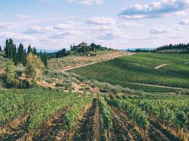 paysage du chianti road trip en toscane