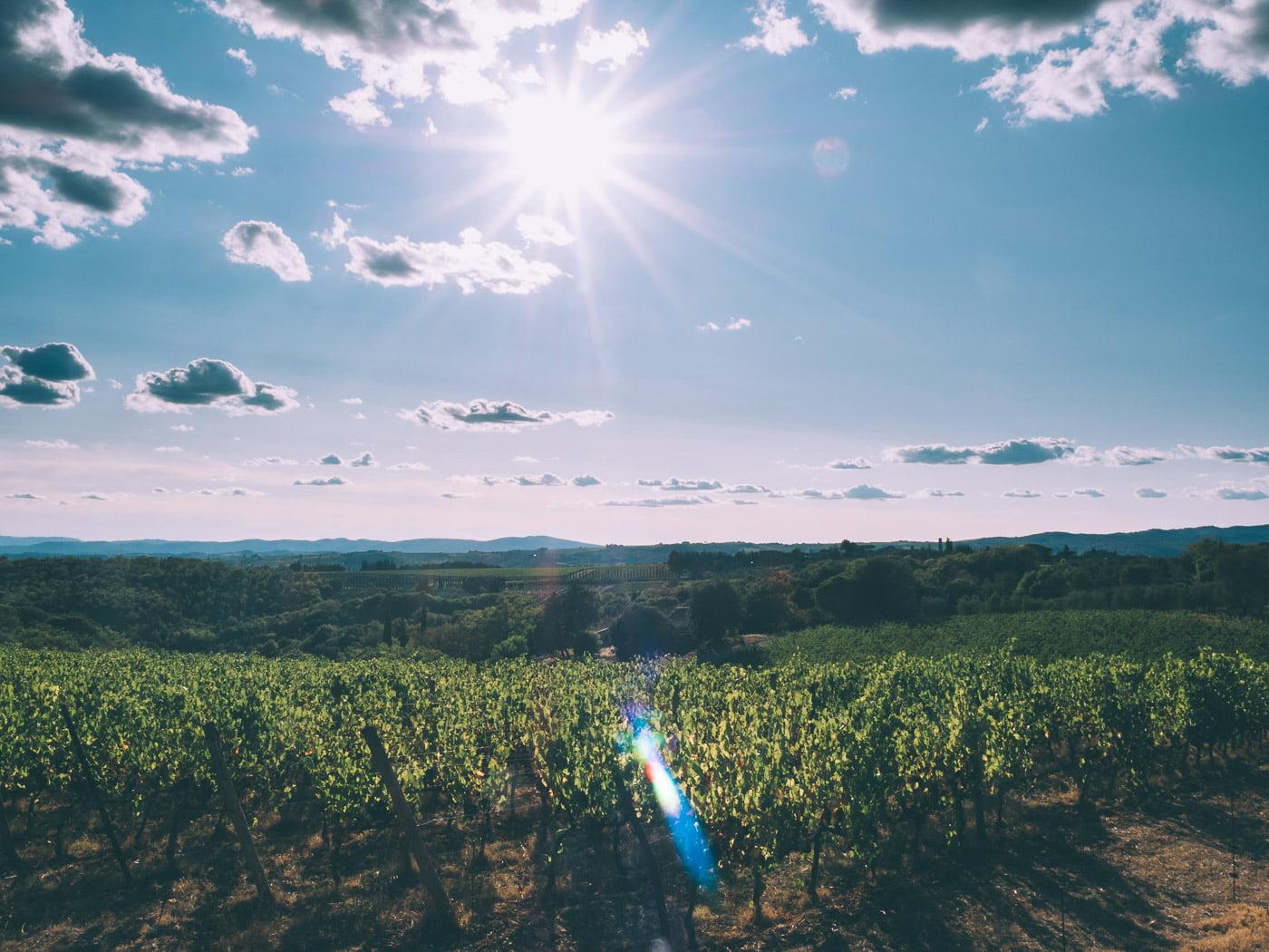 Visiter le Chianti en Toscane