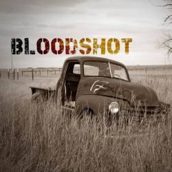 Blooshoot_logo