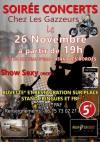 """26 novembre 2016 Punk The System, Bloodshot, Gone Rockin aux Bordes """"Salles des Fêtes"""""""