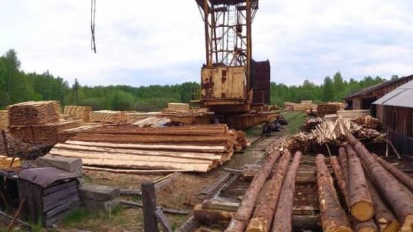 Рабочее лесоперерабатывающее предприятие